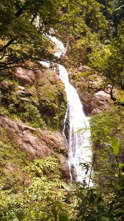 Pura Vida Gardens and Waterfalls : Tallest Waterfall in Costa Rica