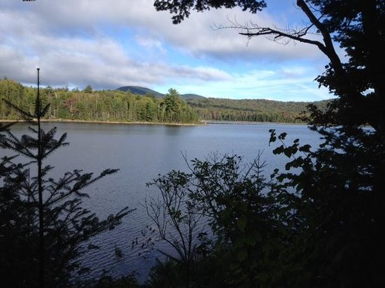 Adirondack Park: View from Cedar Lakes lean-to #2