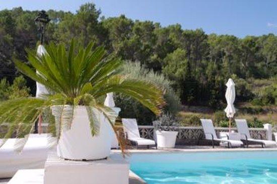 Jardin del eden b b reviews esporles spain tripadvisor for Jardin del eden