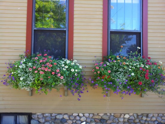Korner Kottage Bed & Breakfast: Those beautiful window boxes!
