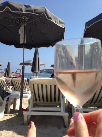Royal Antibes Hotel, Residence, Beach & Spa : ROSE AND BEACH