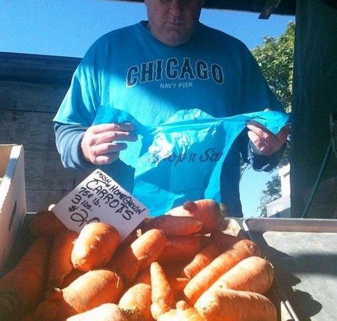 Soulard Farmers Market : Carrots should look like THIS!