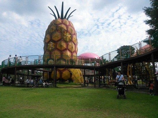 Hamamatsu Fruit Park Tokinosumika: シンボルマーク