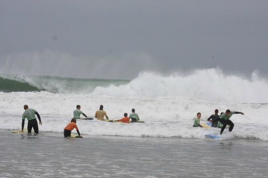 The Escape Surf School: Great Waves