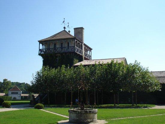 Chateau Smith Haut Lafitte : Terrein