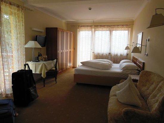 Hotel Garni Aster: interno camera