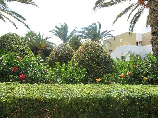 Κoutouloufari Village Holiday Club : Gardens