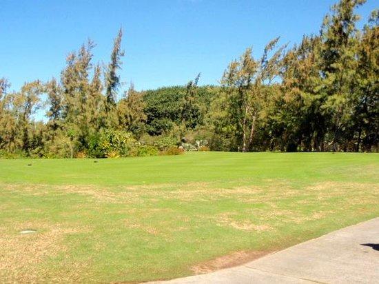 Ile Aux Cerfs Golf Club: Grounds