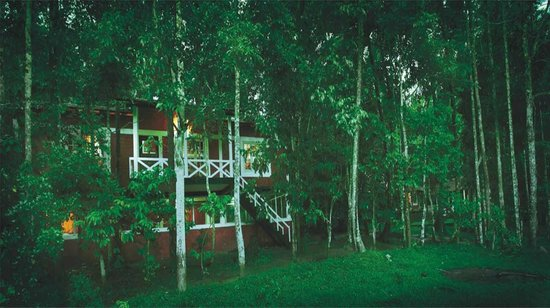 Emarald Western Ghats Resorts: The jungle lodge