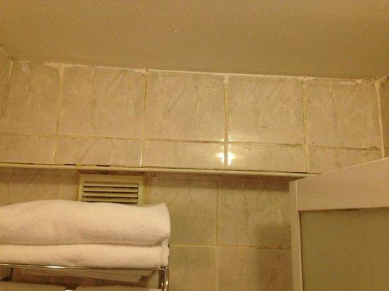 Ersu Hotel: Bathroom 1