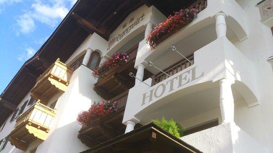 Hotel Metzgerwirt: Hotel