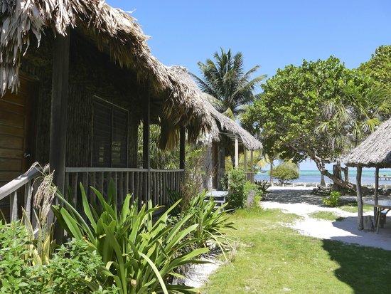 Hotel del Rio: notre cabanas à gauche
