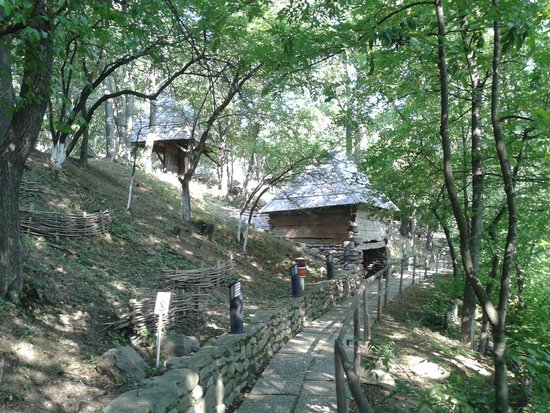 Herastrau Park: TRILHAS