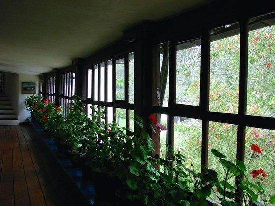 Hacienda Zuleta : Ventanal