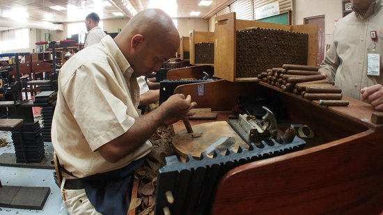 La Aurora Cigar Factory: Rolling cigars - one of their best rollers