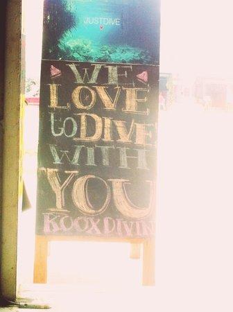 Koox Diving : Dive shop