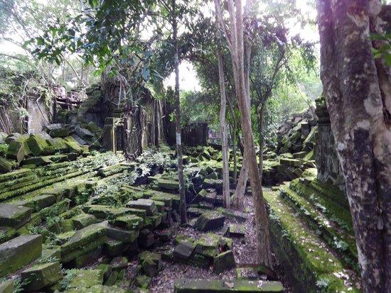 Beng Mealea: 遺跡の中です。