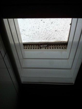 Crestfield Hotel: La fenêtre de la salle de bain...