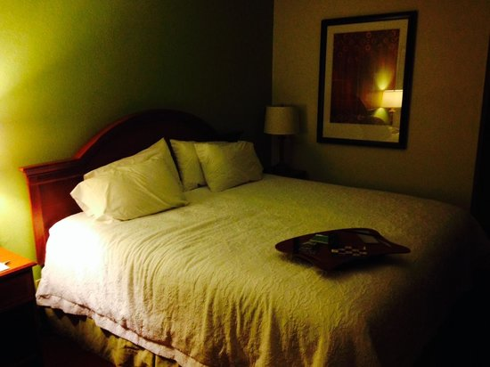 Hampton Inn Walterboro: The cozy bed