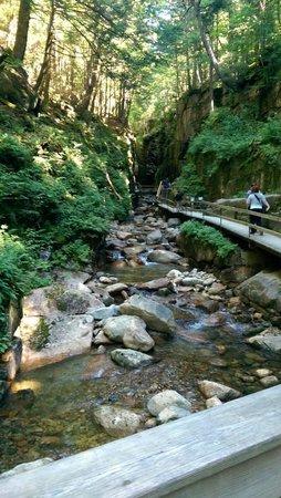 Franconia Notch State Park: Walkway