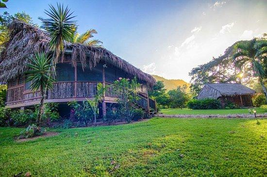 Bocawina Rainforest Resort & Adventures: Duplex Casita