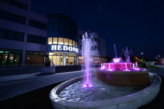 Hedonic Hotel