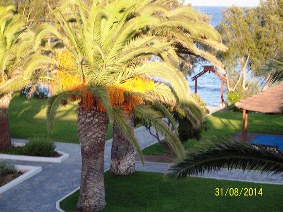 Lakitira Resort & Village: vista dalla camera