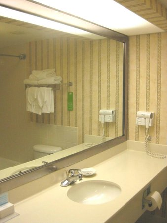 Hampton Inn Ft. Lauderdale Plantation: Bathroom vanity