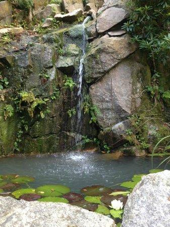 The Waterwheel Inn: waterfall in garden