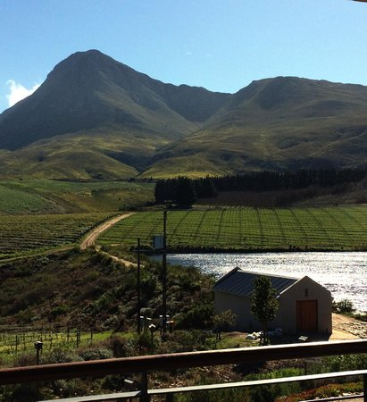 Creation Wines: view from wine tasting room