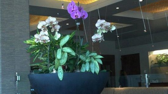 Hotel Andaluz: The lobby is filled with beautiful orchids