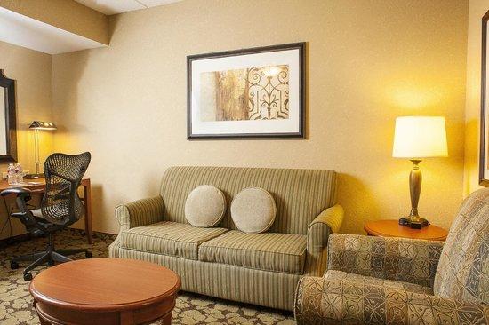 Hilton Garden Inn Hattiesburg: King Evolution Suite