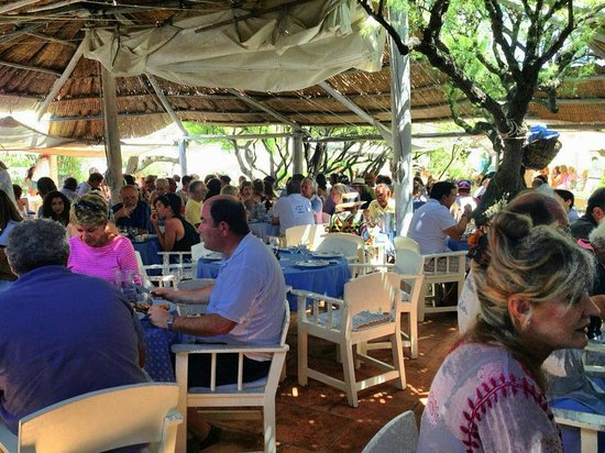 Le Club 55 : Outdoor Dining Area