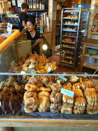 The Other Paw Bakery and Cafe: Anything you can imagine