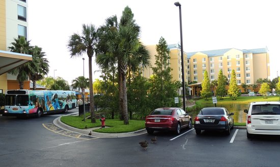Courtyard by Marriott Orlando Downtown: Hotellets buss som körde oss till Sea World
