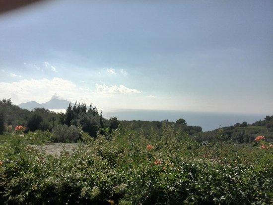 Tenuta Montecorbo: vista panoramica dalla terrazza