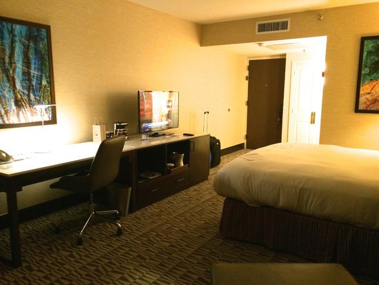 Hilton Phoenix Airport: The Room