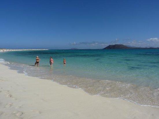 Suite Hotel Atlantis Fuerteventura Resort : Sand dune beach