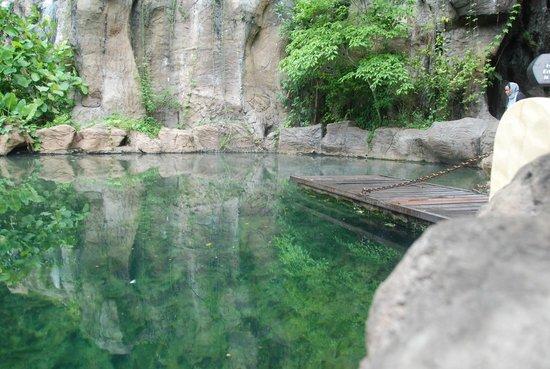 The Banjaran Hotsprings Retreat : Hot Spring