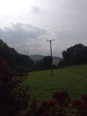 Wood Advent Farm : View