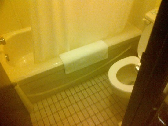 Cedar Lane Motel: Bathroom