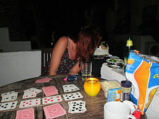 Sagterra Studios: Spela kort på balkongen=klassiker. Hotellkisse vill va med!