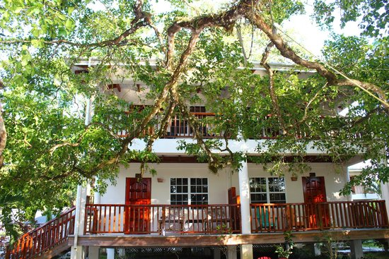 Black Orchid Resort: Our buidling