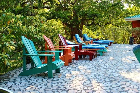 Black Orchid Resort: Poolside