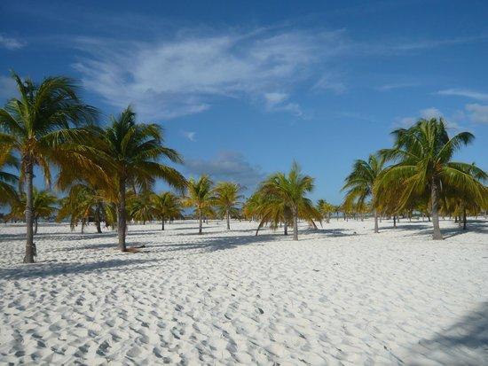 Playa Paraiso: The beach