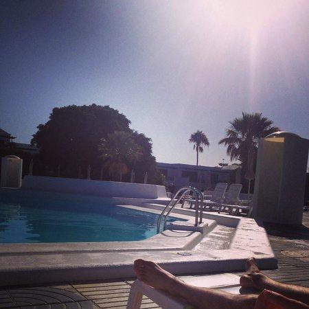 Relaxia Olivina: Poolside