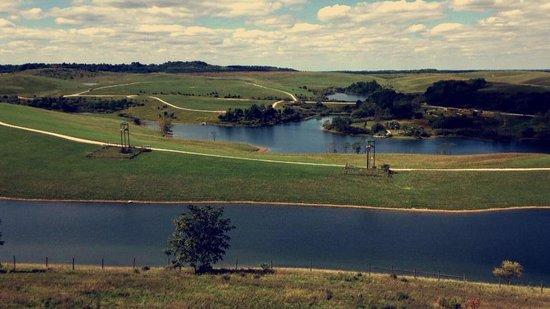 Wild Zipline Safari: View from a zipline tower