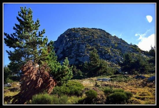 Le Ciel d'Ardeche: Mont Gerbier (à 10 min)