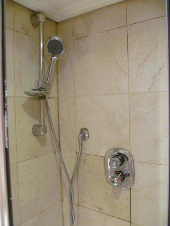 Hyde Park Suites : Shower