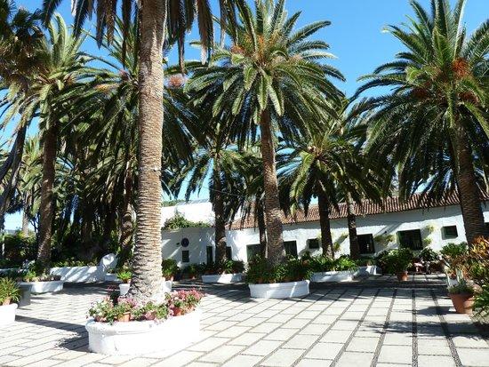 Hotel Rural El Patio: Pation principal